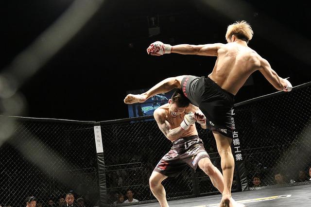 Conor McGregor zápasi v organizaci UFC (ilustrační obrázek)